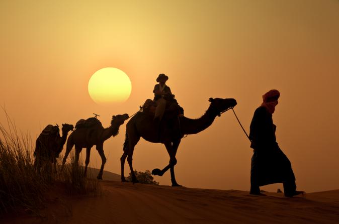 excursion-dos-de-chameau-au-coucher-du-soleil-dans-la-palmeraie-de-in-marrakech-1780401
